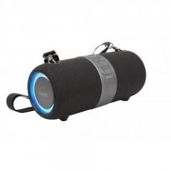 Φορητό Ηχείο Bluetooth 5.0 20W IPX6 w/Hands-Free & FM/Radio TWS Well Bounce (SPKR-BT-BOUNCE-WL)